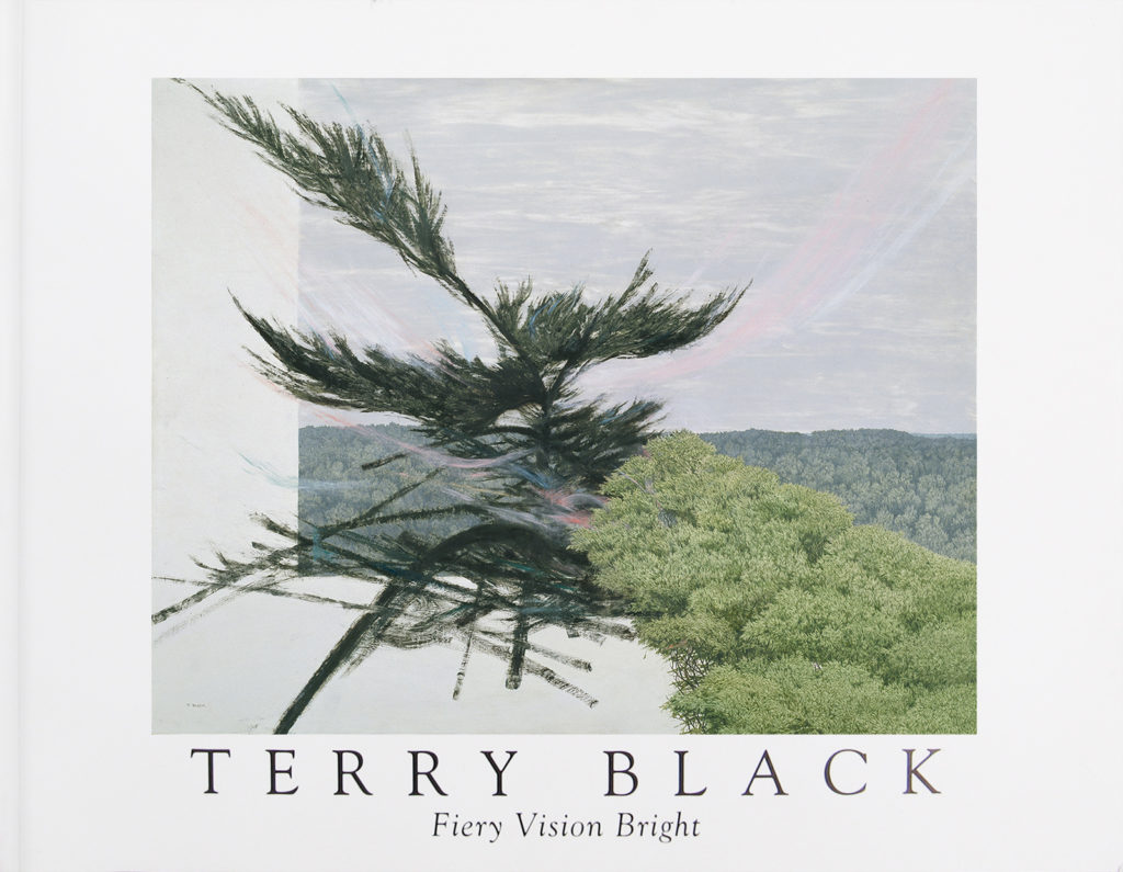 Book Cover - TERRY BLACK Fiery Vision Bright